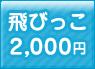 飛びっこ 2,000円