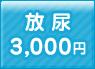 放尿 3,000円